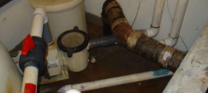 sewage-bacteria-blog