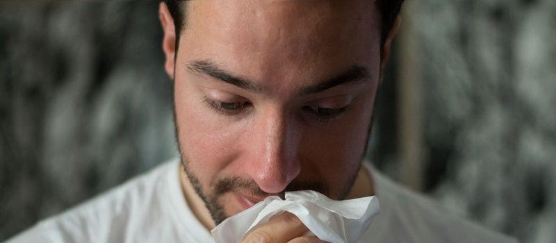 allergens dust