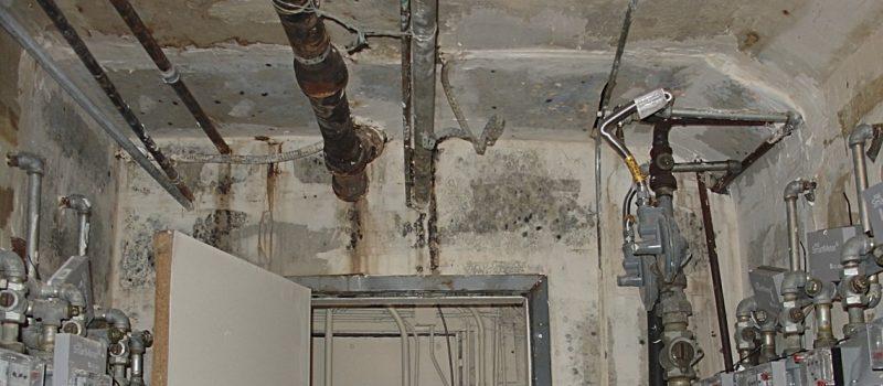 assess your asbestos risks